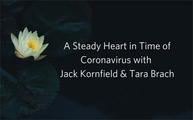 Video Series: A Steady Heart in Time of Coronavirus with Jack Kornfield & Tara Brach