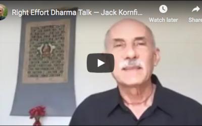 Video: Right Effort Dharma Talk