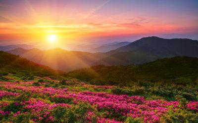 Video: Summer Solstice Meditation